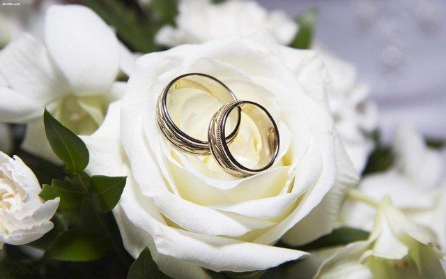 نرخ ازدواج در آذربایجان غربی افزایش یافت