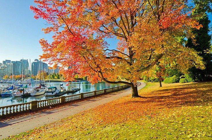 با پارک استنلی ونکوور کانادا آشنا شویم